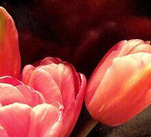 Peach Pleasure by PatChristensen