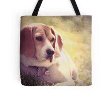 Daydream Doggie Tote Bag
