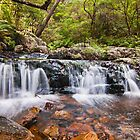 Little Gem - Kalang Falls by Chris  Randall