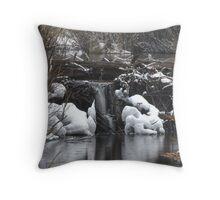 Beaver Dam Waterfall Throw Pillow