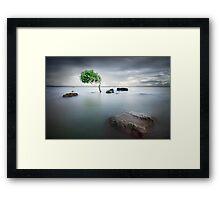 Zen Tide Framed Print