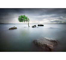 Zen Tide Photographic Print