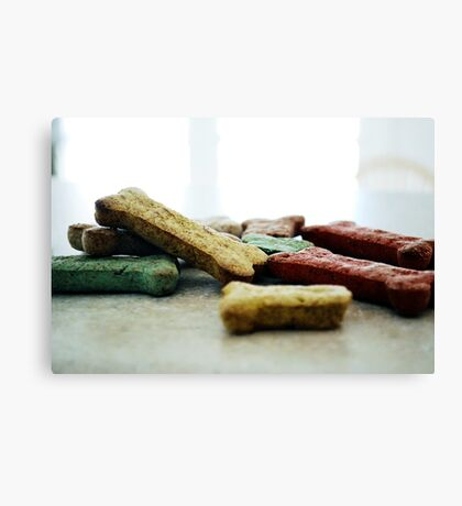 Dog Biscuits Canvas Print
