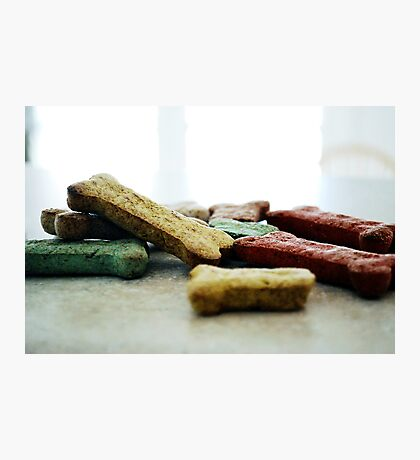 Dog Biscuits Photographic Print