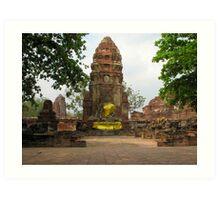 Buddha Statue at Ayutthaya  Art Print