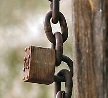 Lock and Chain by Barb Miller