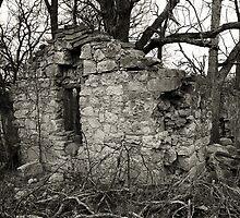 Stone Home by Sam Seizert