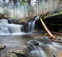 RB Rickett's Falls by Lori Deiter