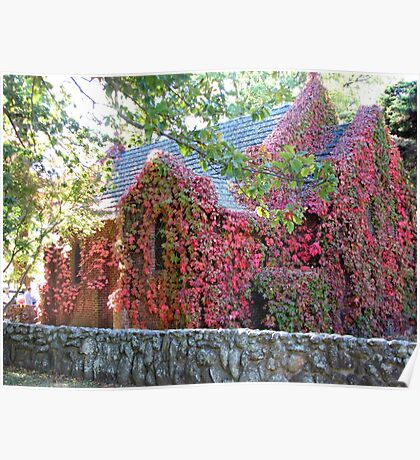 Vine Covered Church at Gostwyck. Poster