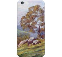 'Rising Mist - Trawool Valley' iPhone Case/Skin