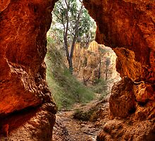 Golden Gully: 'In the bat-cave', Hill End by David Mapletoft
