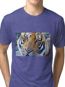 Friendly Tiger Tri-blend T-Shirt