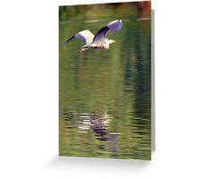 Heron Greeting Card