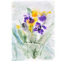 Irises in aqua Photographic Print