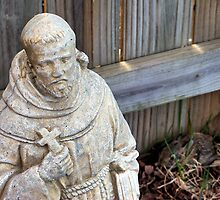St. Francis & Friend by Brian Gaynor
