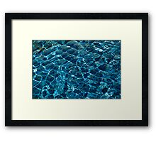 Penguin Pool I Framed Print