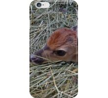 Welcome To The World Little Fawn iPhone Case/Skin