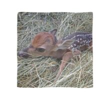 Welcome To The World Little Fawn Scarf