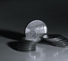 Coins stack in B&W by lautsu
