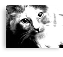 Shelby in Black & White Canvas Print