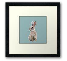 Rabbit drawing Framed Print