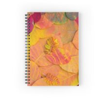 Colorful bright autumn leaves background Spiral Notebook