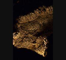 Carlsbad Caverns XII Unisex T-Shirt