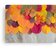 Colorful autumn leaves background on the stone Canvas Print