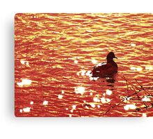 Wyoming-Duck on the River Canvas Print