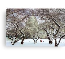 Capital Sledding Canvas Print