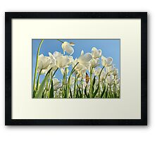 Insect world Framed Print