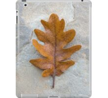 Oak single autumn leaf on the stone iPad Case/Skin