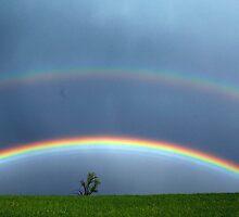 Double Rainbow by mim304