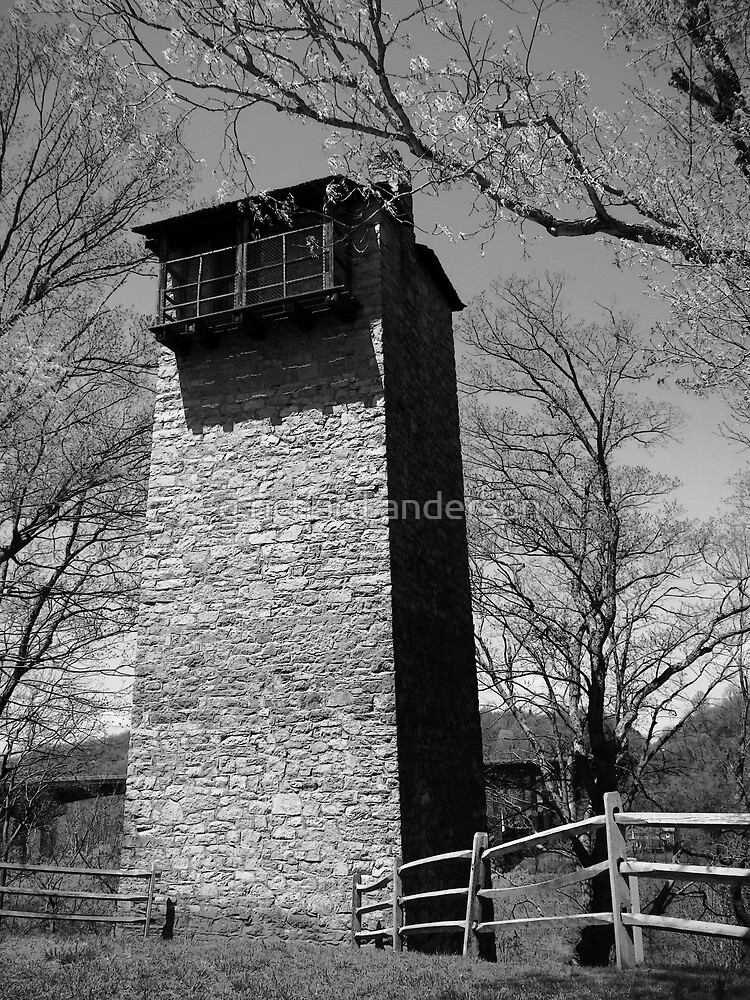 Historic Shot Tower by g richard anderson