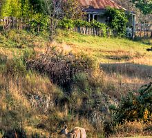 Be It Ever So Humble  #2- Hill End, NSW - The HDR Experience by Philip Johnson