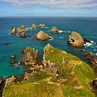 Nugget Point - Catlin Coast, New Zealand by Phil McComiskey