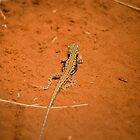 Desert Getaway... by paulmcardle