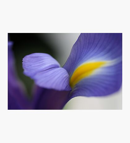 Iris of DREAMS Photographic Print
