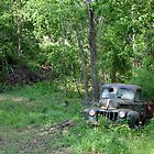 """FORD - """"Found On Road Dead"""" by Betty Northcutt"""