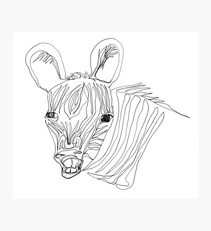I think this zebra is laughing at me Photographic Print