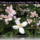 Wishing you a very happy Mothers' Day by BlueMoonRose