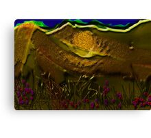 Night landscape Canvas Print