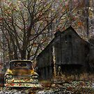 Waiting for Winter by connie3107