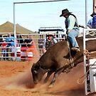 Ride Em Cowboy by Ruth Anne  Stevens