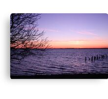 Dusk by the tree Canvas Print
