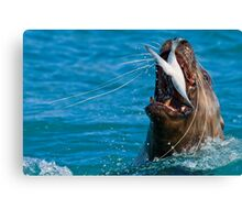 Swallow it Whole..Just for the Halibut! Canvas Print