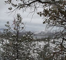 Cook Peak 2011 Snowy View Lake and Landscape by Corri Gryting Gutzman