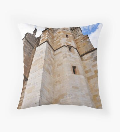Rupunzel let down your long hair Throw Pillow