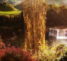 Raukawa Falls, New Zealand by Cathleen Tarawhiti