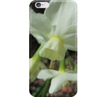 Creamy White and Lemon Daffodils iPhone Case/Skin